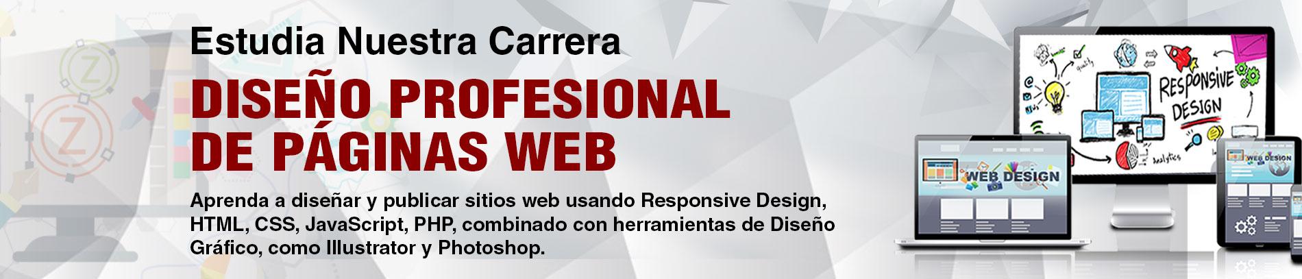 Diseño Profesional de Páginas Web